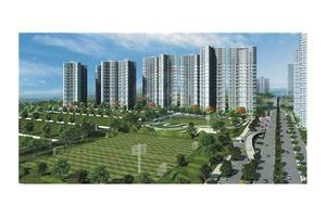 Photo: Sector - 133 Noida Delhi,