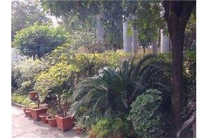 Photo: E-3,ARERA COLONY Bhopal Madhya Pradesh,