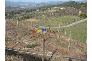 Photo:  Mondim de Basto, Vila Real Vila Real,
