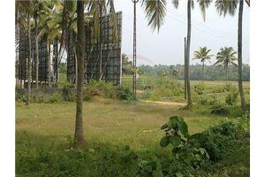 Photo: Nedumbassery Ernakulam Kerala,